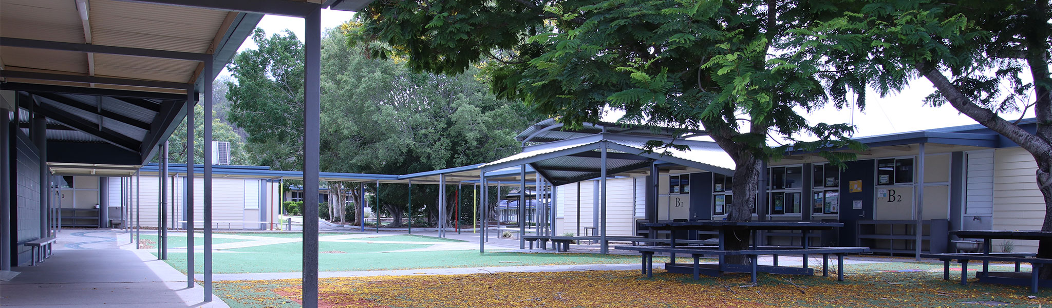 Windaroo State School campus